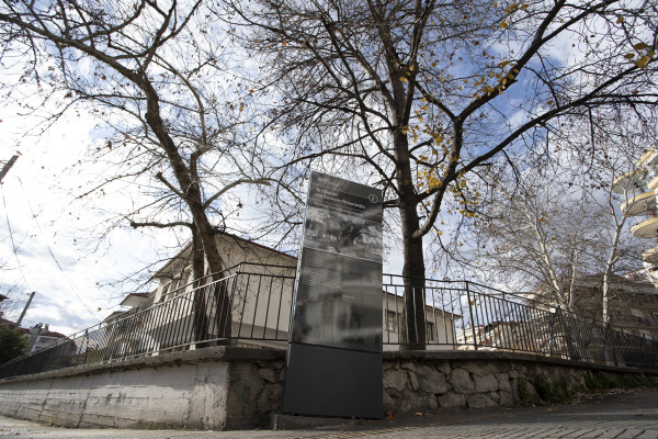 The Plane Tree in Boutsava District