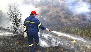 Πυροσβεστική Υπηρεσία Γιαννιτσών