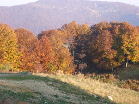 Mount of Paikon- Routes